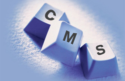 Content Management Systems India